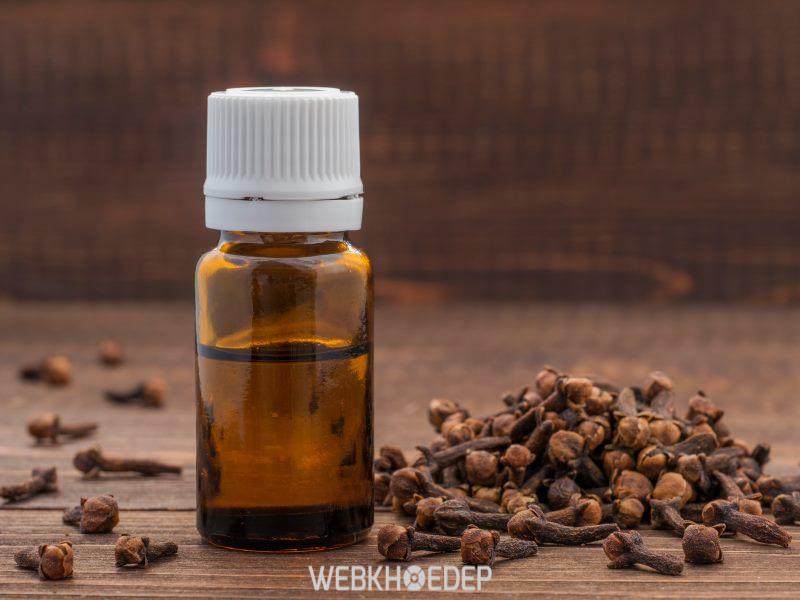 Tinh dầu đinh hương nguyên chất