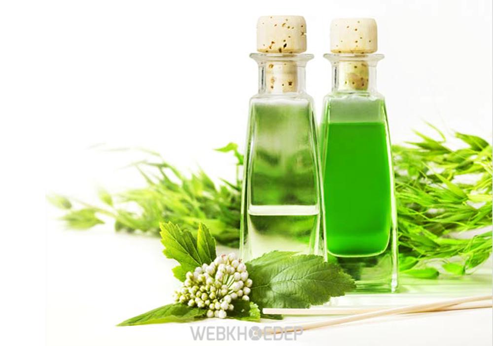 Tác dụng phổ biến nhất của tinh dầu tràm là làm đẹp da