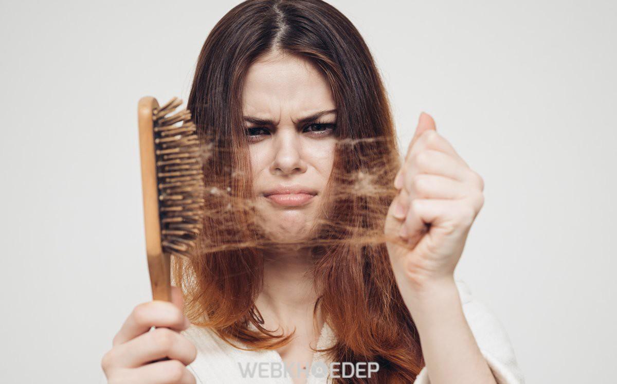 Thiếu protein khiến tóc yếu và dễ gãy rụng hơn