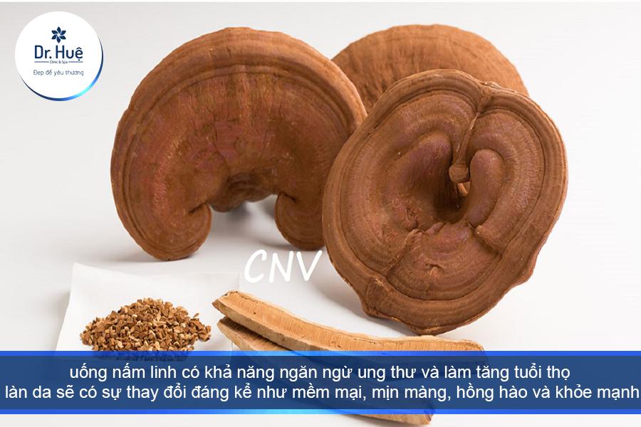 Tác dụng của nấm linh chi