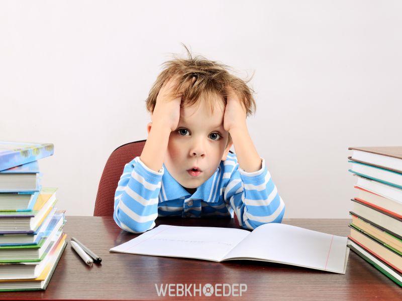 Học sinh ngày nay quá tải với áp lực học hành