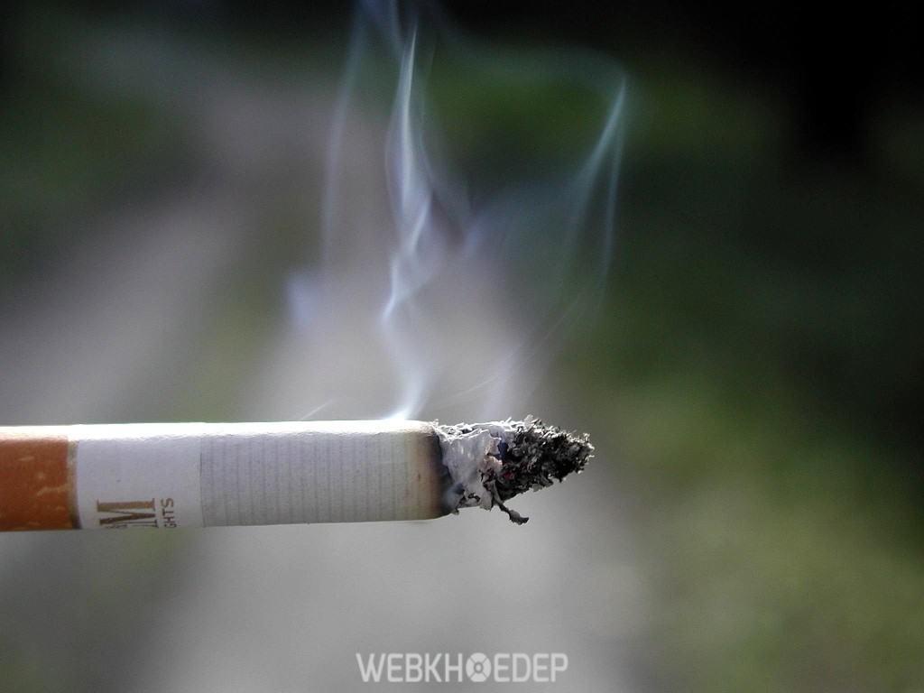 Thuốc lá là tác nhân gây ra nhiều bệnh tật cho con người