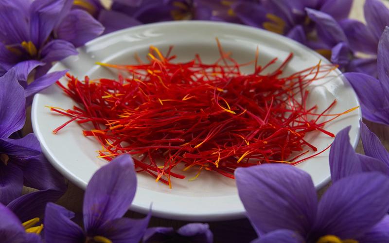 Loài saffron được thần tượng bởi phái đẹp trên toàn thế giới.