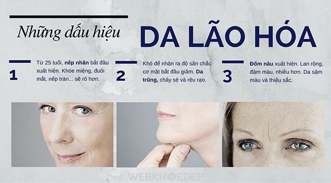Collagen ADIVA – Bí quyết cho làn da không tuổi - Hình 3
