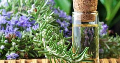 Mẹo tạo mùi hương tự nhiên quyến rũ cho cơ thể phái đẹp