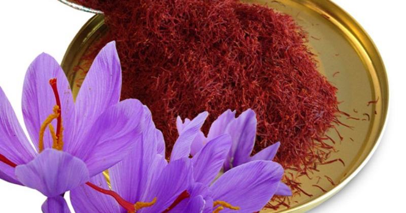 Nhụy hoa nghệ tây Saffron chỉ tốt khi dùng đủ lượng và thường xuyên