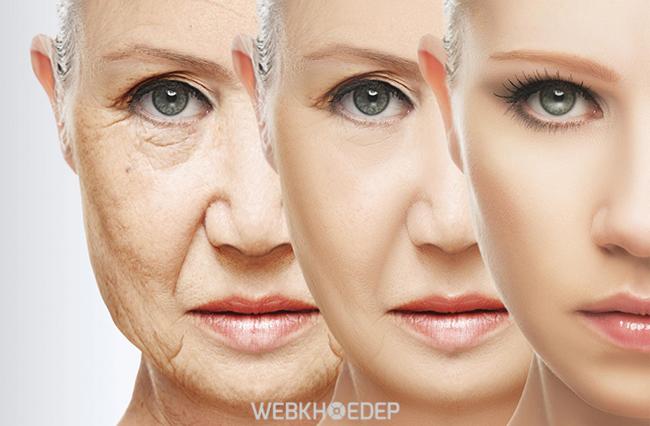 Tại sao bạn nên chọn ADIVA để tăng cường Collagen cho da? - Hình 1
