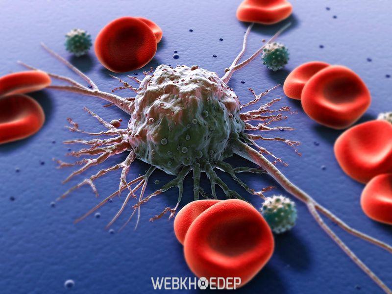 Tế bào bệnh ung thư