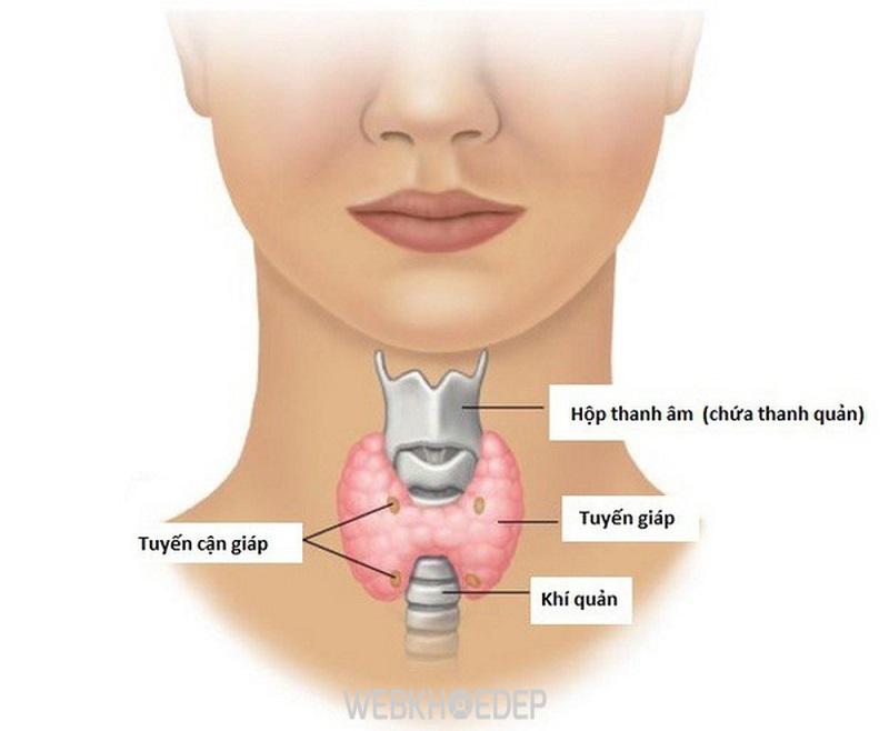 Ung thư di căn sang các vùng xung quanh tuyến giáp