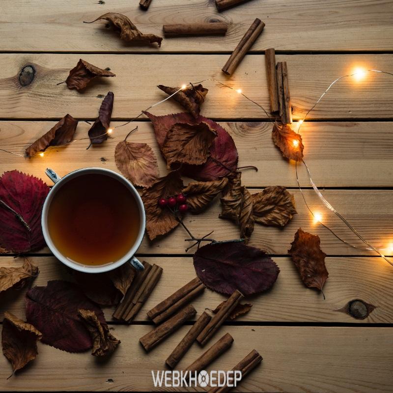 Pha nước linh chi uống giúp tăng cường hệ miễn dịch cho cơ thể