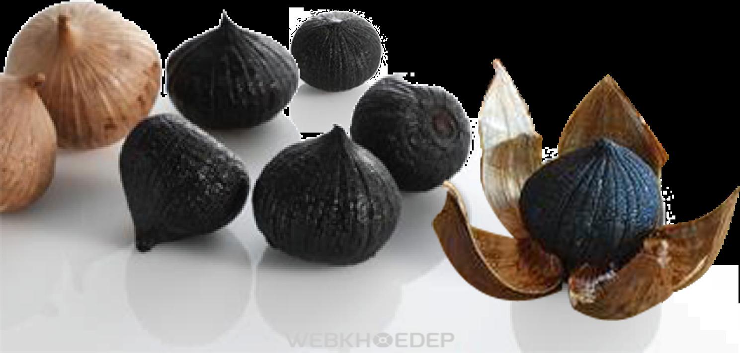Vì sao ai cũng nên dùng tỏi đen để gìn giữ sức khỏe? - Hình 1
