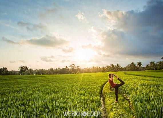 Yoga - Môn Thể Thao Giúp Cân Bằng Cuộc Sống - Hình 2